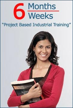 Project based industrial training