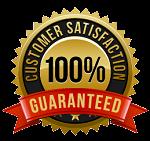 Satisfication logo